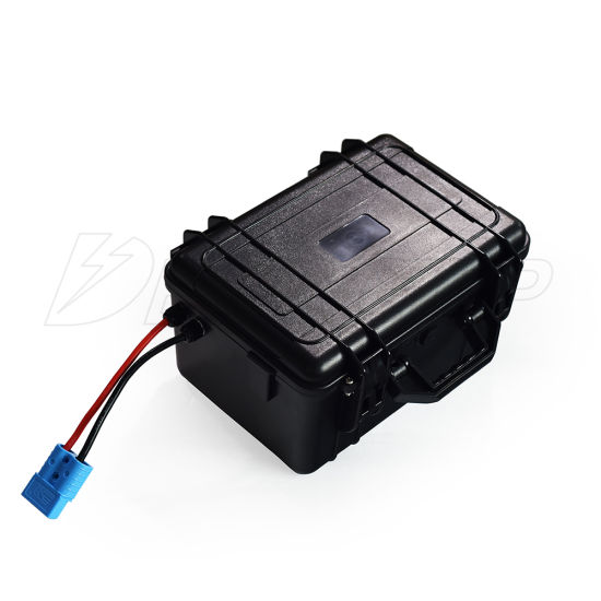 Waterproof 8s BMS 24V 100ah LiFePO4 Lithium Battery for Boat Solar RV Camping Car