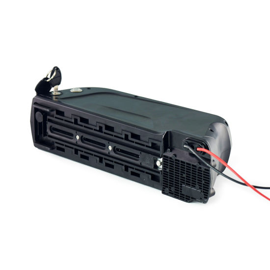 48V 10ah Lithium Ion Battery for Electric Bike