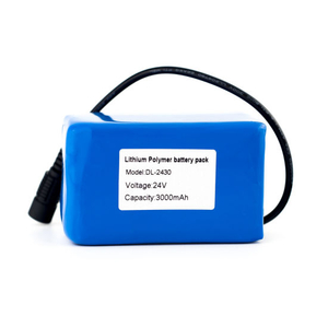 24V 3000mAh Rechargeable Li-Polymer Battery Pack for LED Light
