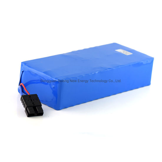 48V Lithium Ion Battery 48V20ah Bike Battery Electric Scooter 1000W 48V