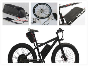OEM Rechargeable Li Ion 36V 10ah 12ah 15ah Dolphin Type Electric Bike Battery